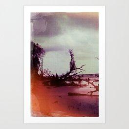 Driftwood 4, Charleston, SC Art Print