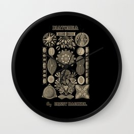 """""""Diatomea"""" from """"Art Forms of Nature"""" by Ernst Haeckel Wall Clock"""