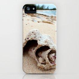 Conch on Bahama Beach iPhone Case