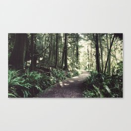 Every Journey Begins Within [16:9] Canvas Print
