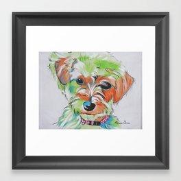 Morkie Yorkie Maltese Pop Art Dog Pet Portrait Framed Art Print