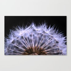 seeded Canvas Print