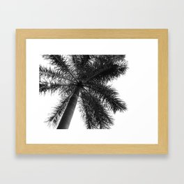Palm Tree Photography Minimalism Black and White Framed Art Print