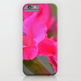 Pretty Pink Gladiolas iPhone Case