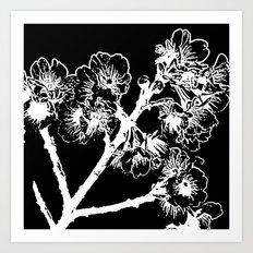Cherry Blossom #3 Art Print