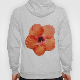 Just the Hibiscus Hoody