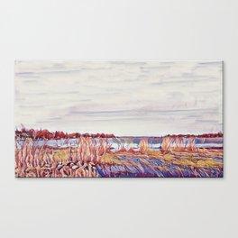 Shore line fall colors Canvas Print