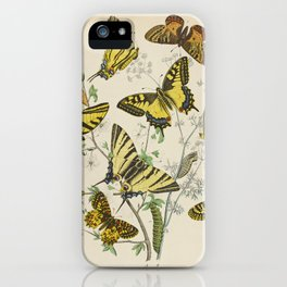 BUTTERFLIES LEPIDOPTERA Scarce Eastern Tiger Swallowtail iPhone Case