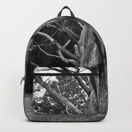 Bizarre Poetry Backpack