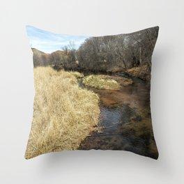 Grass Alongside Oak Creek Throw Pillow