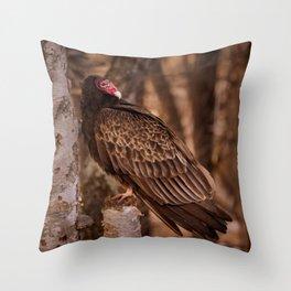 Turkey Vulture In Birch Tree Throw Pillow