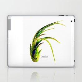 Tillandsia Paucifolia Air Plant Watercolors Laptop & iPad Skin