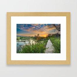 """""""Towards the sun....."""" Framed Art Print"""