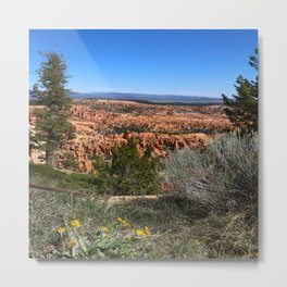 Wild  Nature of Bryce Canyon Metal Print