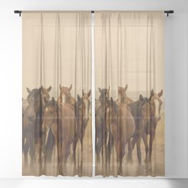 Wild Horses 6608 - Northwestern Nevada Sheer Curtain