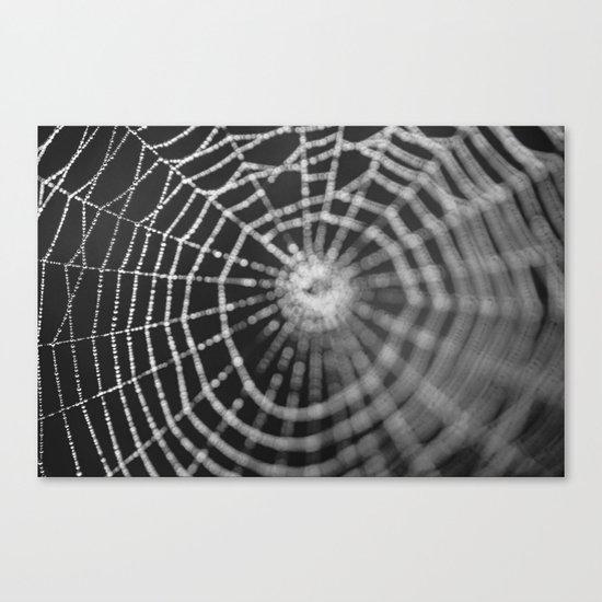 Bokeh Web  Canvas Print