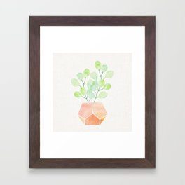 Bonsai Jade Plant Framed Art Print