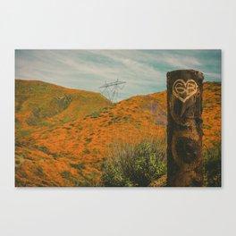 California Poppies 013 Canvas Print