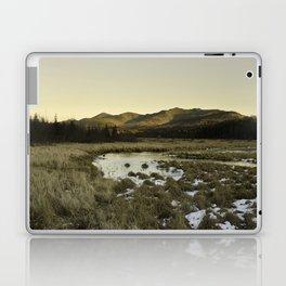 Prelude Laptop & iPad Skin