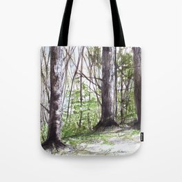 Woodland Trees in Vermont Illustration Nature Art Tote Bag