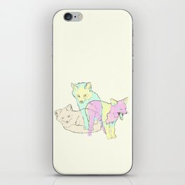 3 Channel Island Foxes iPhone Skin