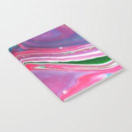 Gidget Notebook