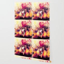 baboon monkey wslsh Wallpaper