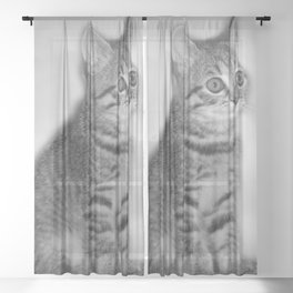 Little darling Sheer Curtain
