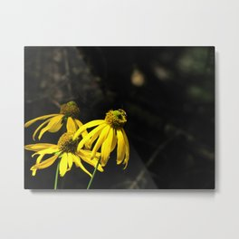 Nectar Hunter Metal Print