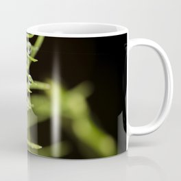Spruce branch with drops Coffee Mug