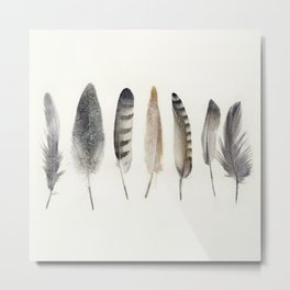 native earth feathers Metal Print