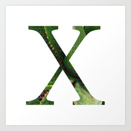 "Initial letter ""X"" Art Print"