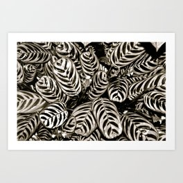 Foliar Art Print