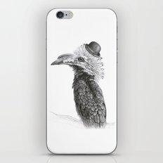 Fancy Hornbill iPhone & iPod Skin