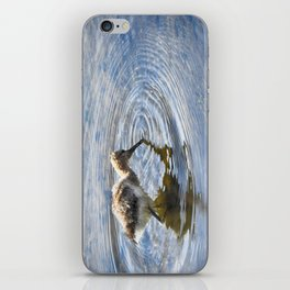 American Avocet Chick iPhone Skin