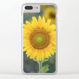 Tournesol jaune Clear iPhone Case