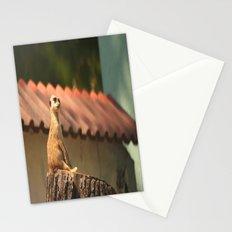 Funny Observer Stationery Cards
