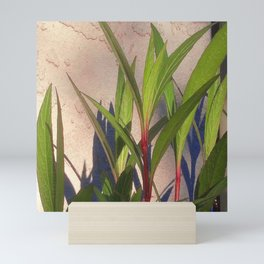 Long Green Leaves and Shadows Mini Art Print