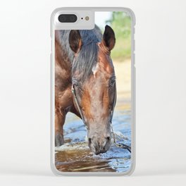 horse collection. swimm Clear iPhone Case