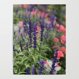 Flowers in Butchart's Garden Poster