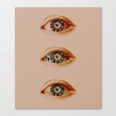 What I Saw Canvas Print