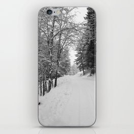 Wintery Road iPhone Skin