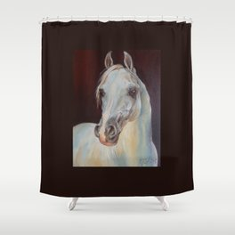 Arabian Horse portrait Gray horse head horse painting Shower Curtain