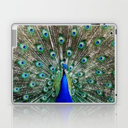 Vibrant Display Laptop & iPad Skin