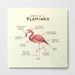 Anatomy of a Flamingo Metal Print