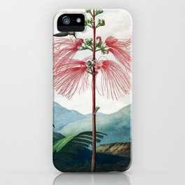 Large Flowering Sensitive Plant The Temple Of Flora iPhone Case