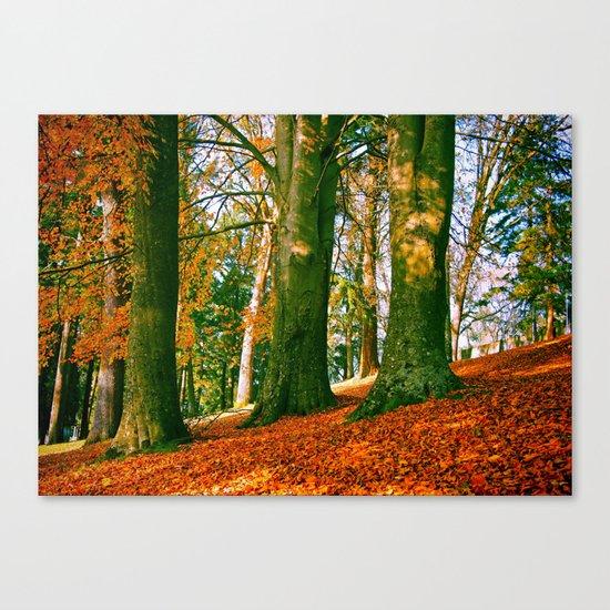 Autumn park hill Canvas Print