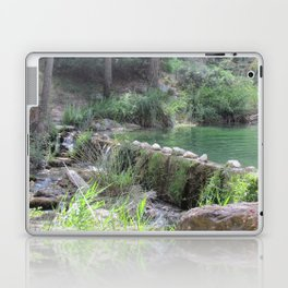 A Day at the River Laptop & iPad Skin