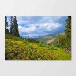 High Country Rainbow Canvas Print