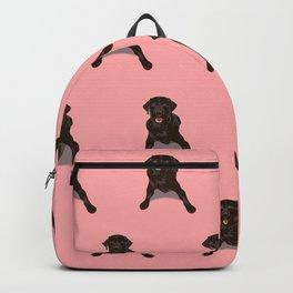 Black Labrador Pattern - Pink Backpack